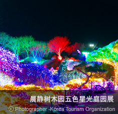 晨静树木园五色星光庭园展 ⓒ Photographer - Korea Tourism Organization