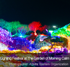 Lighting Festival at The Garden of Morning Calm ⓒ Photographer - Korea Tourism Organization